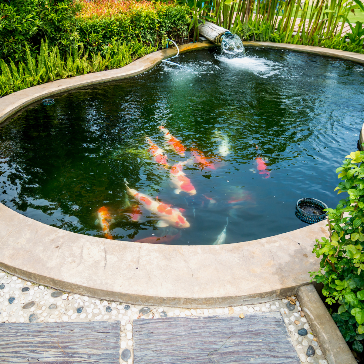 How much does it cost to remove a pond?